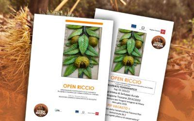 Progetto OPEN RICCIO – Relazione generale finale e allegato fotografico